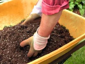 Garden Fertilizer Gallery